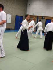 The basics aikido stance